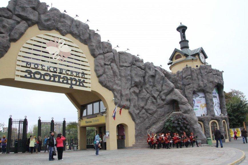 Кузнецовы, Муравьевы и Мухины получат скидку в зоопарк