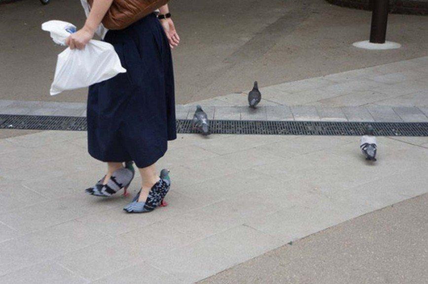 Любительница птиц или городская сумасшедшая?