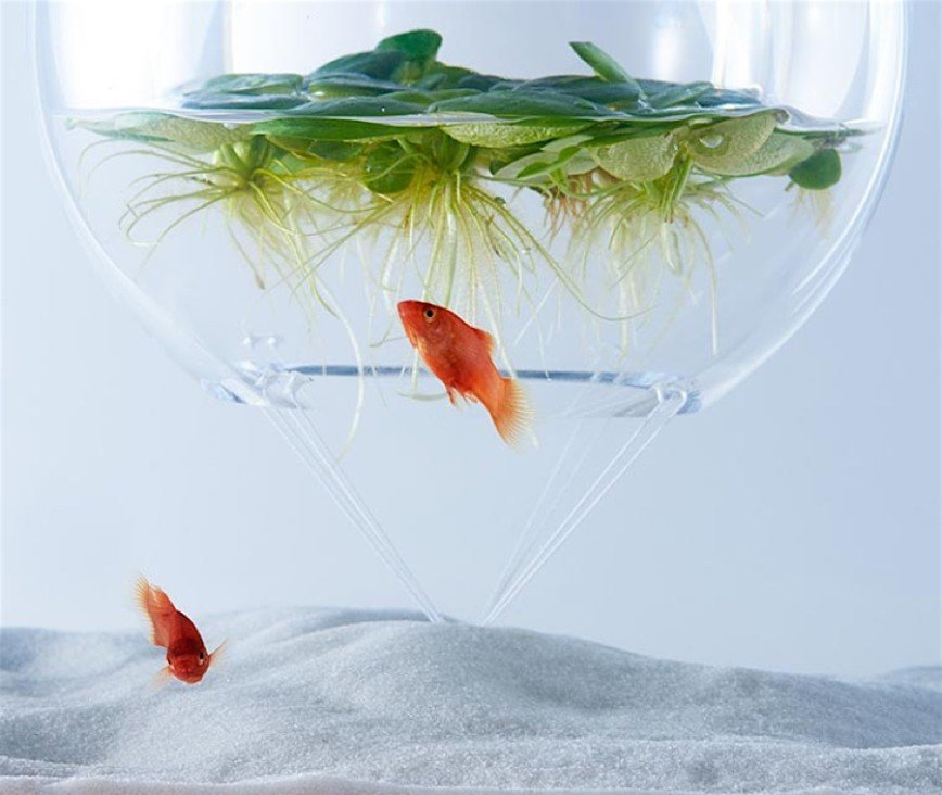 Waterscapes - новый взгляд на аквариумы: