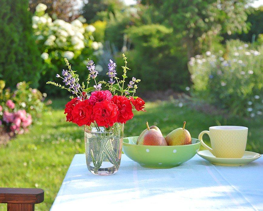 Автор: Bеggy, Фотозал: Мое хобби, Мой любимый сад