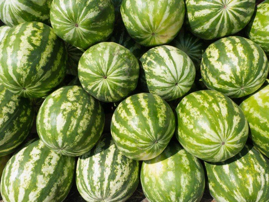 Пей вода, ешь вода: рецепты легких блюд с арбузом от диетолога