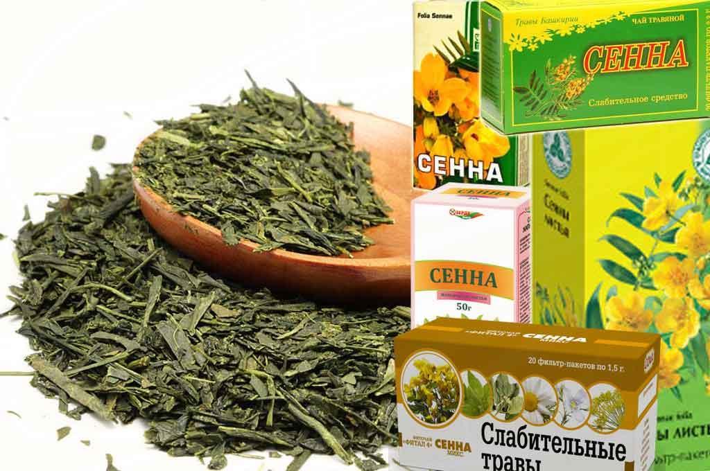 Хватит пить сенну! Александр Мясников рассказал о вреде самой популярной травы для работы кишечника