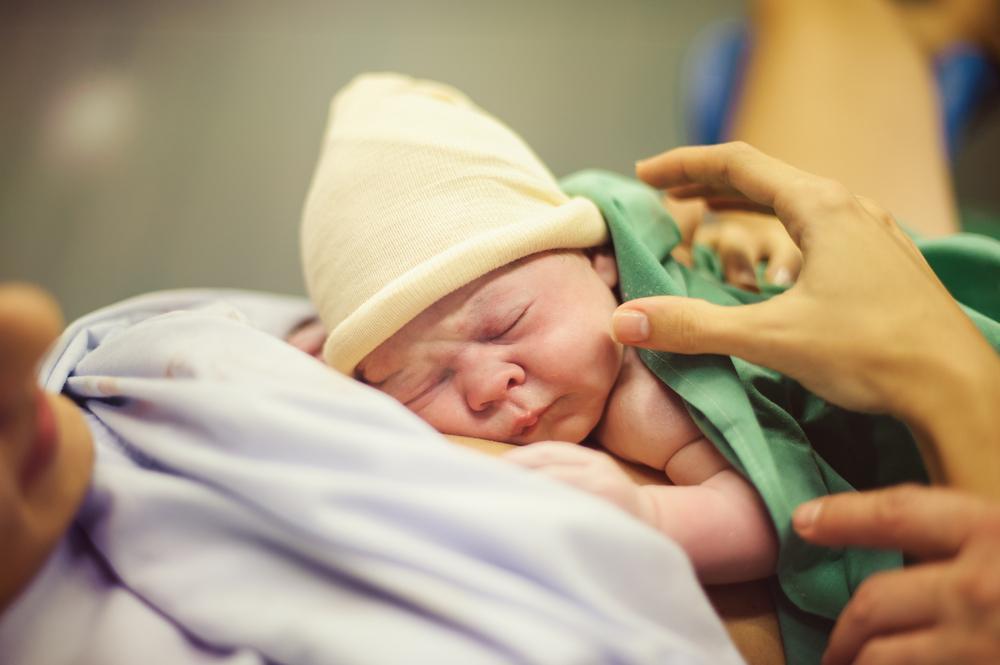 Все бесплатно! Беременность и роды по ОМС. Инструкция для будущей мамы