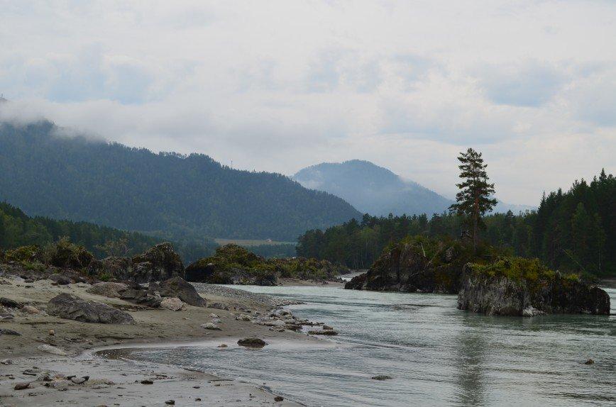 Автор: СветланиЯ, Фотозал: Мой отпуск, Река Катунь, Горный Алтай.
