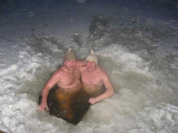 голые моржи фото