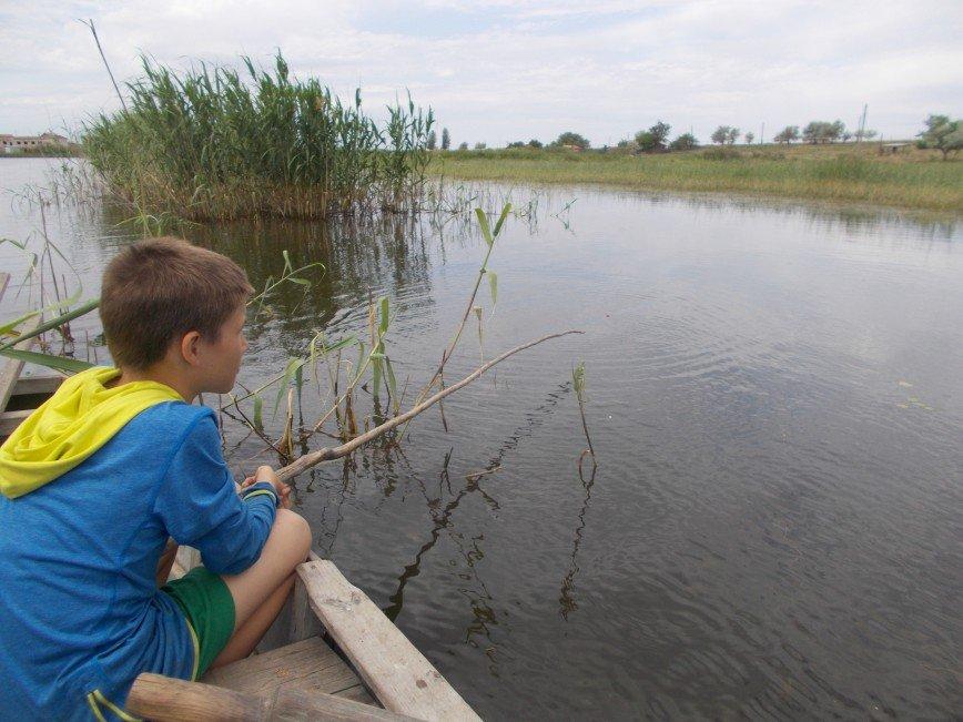 Автор: Светлана Ярославцева, Фотозал: Наши Дети,