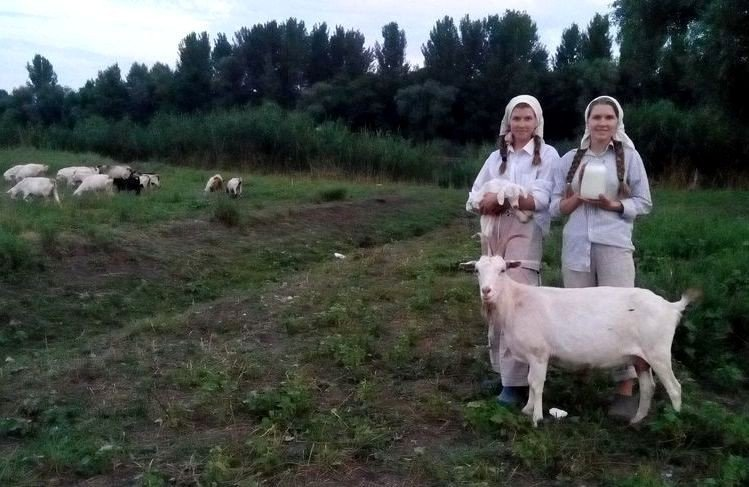 Автор: Светлана Ярославцева, Фотозал: Родные просторы,