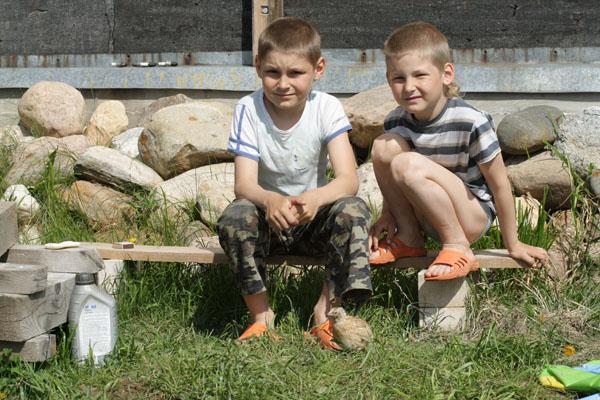 Никитке на день рождения подарили ферму - перепелок. Одного петушка выпустили погулять)