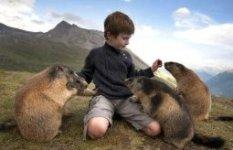 Восьмилетний мальчик - член семьи альпийских сурков