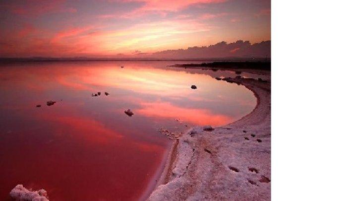 Жилье в испании купить недорого розовые озера