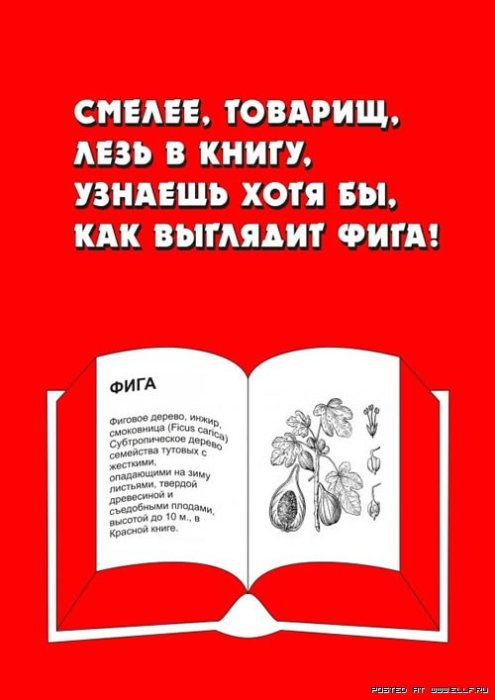 RUkino русские фильмы и сериалы