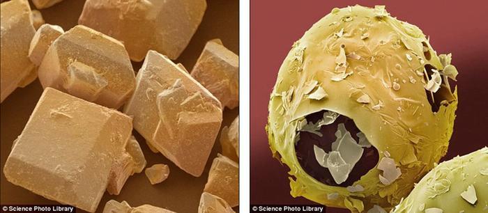 Продукты под микроскопом