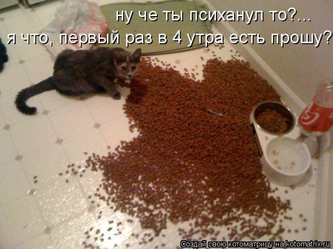 http://eva.ru/topic/77/3350444.htm?messageId=89408007