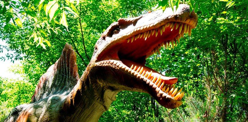"""""""Они моргают и дышат"""": большой парк динозавров откроется в Москве"""