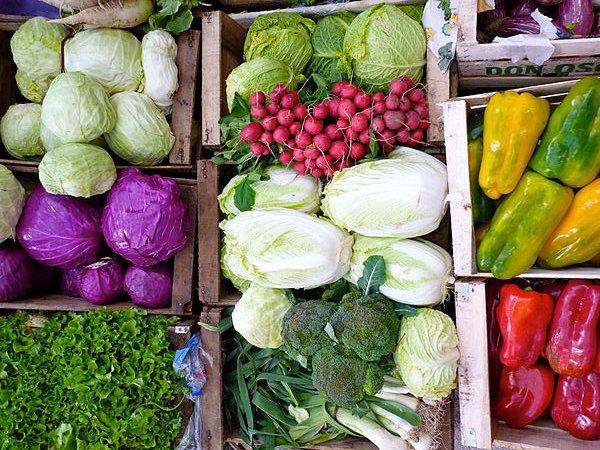 В Нижнем Новгороде началась продажа сертификатов на еду