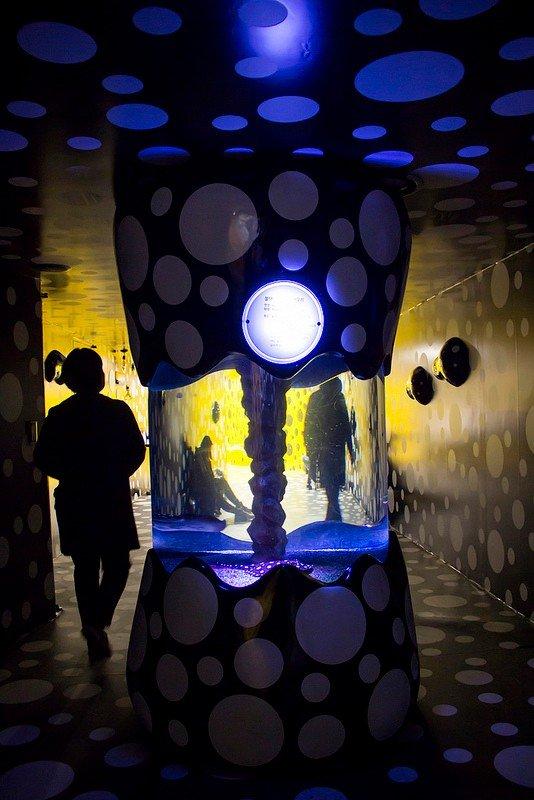 Автор: Розабельверде, Фотозал: Туристические зарисовки, Аквариум с пятнистыми скатами и тематическая фотозона за ним.