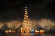 Самые большие в мире новогодние ёлки