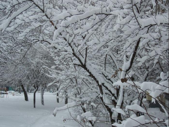 Зима, зима, кругом снега..