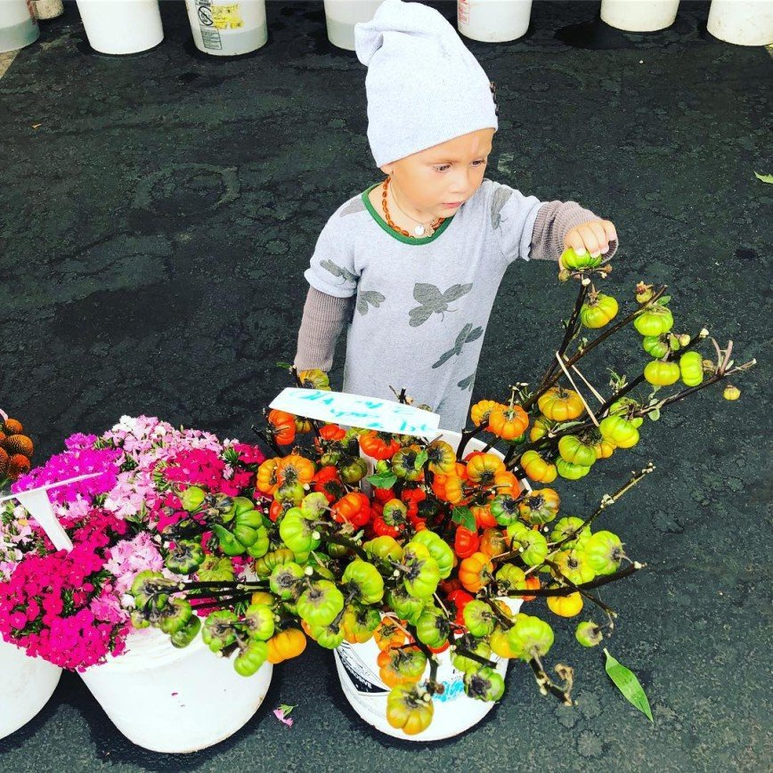 «Эта морщинистая пенка на какао»: Саша Зверева вспомнила детский сад