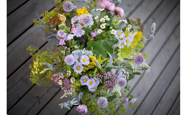 Очень красивое цветов необычных
