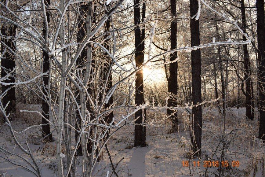 Автор: Багуля, Фотозал: Родные просторы, Зимний вечер