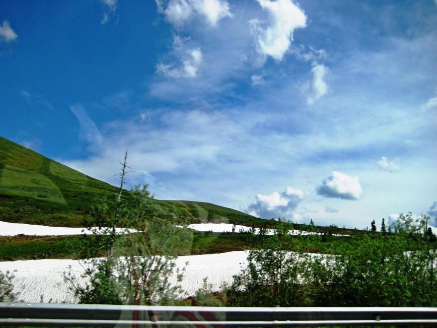 Автор: Багуля, Фотозал: Туристические зарисовки, Июнь 2017. Ну чем не альпийские луга? Красота!!! Трасса М 54. Буйбинский перевал.