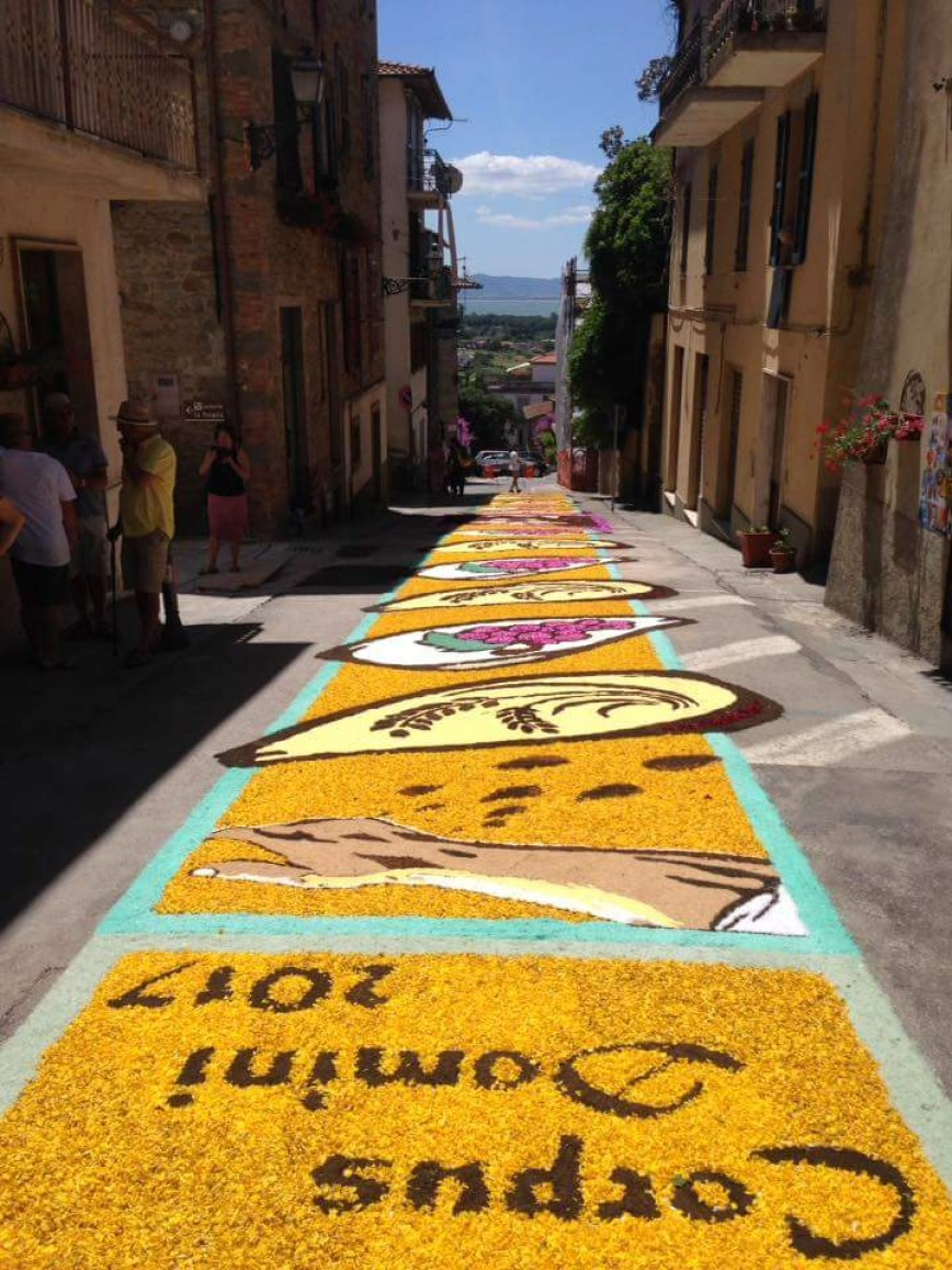 Автор: ЭЛЕН, Фотозал: Родные просторы, Италия. Конкурс цветочных ковров