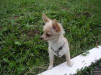 Мое фото Unona