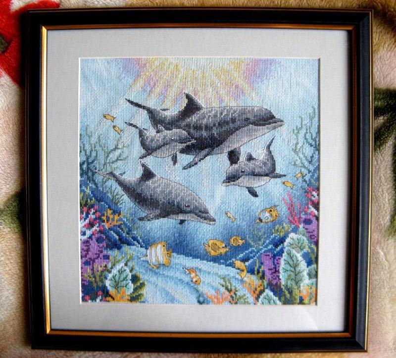 нужны дельфины от дименшенс картинки есть