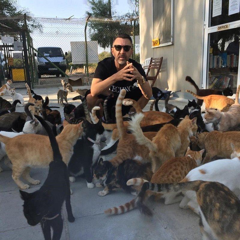 """""""Шнур и котики"""": Сергей Шнуров помогает бездомным животным"""