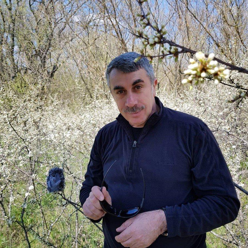 Что делать, если ребенок потерялся: памятка для детей и родителей от Евгения Комаровского