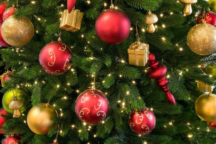 Психологи рассказали, когда лучше убрать новогоднюю елку