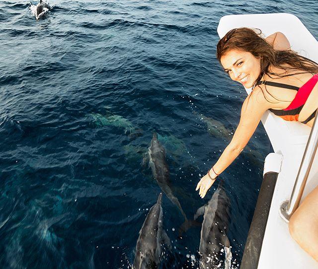 «Они намного умнее нас»: Сати Казанова жалеет дельфинов в неволе