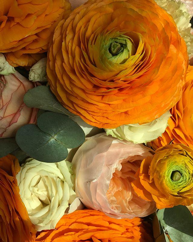 Максим Галкин показал подаренные цветы для Аллы Пугачевой
