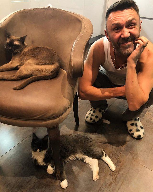 «Теперь котят раздавать!»: в доме Сергея Шнурова появилось еще одно животное