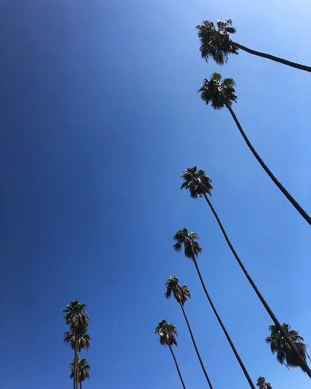 Дмитрий Борисов наслаждается теплой погодой Калифорнии