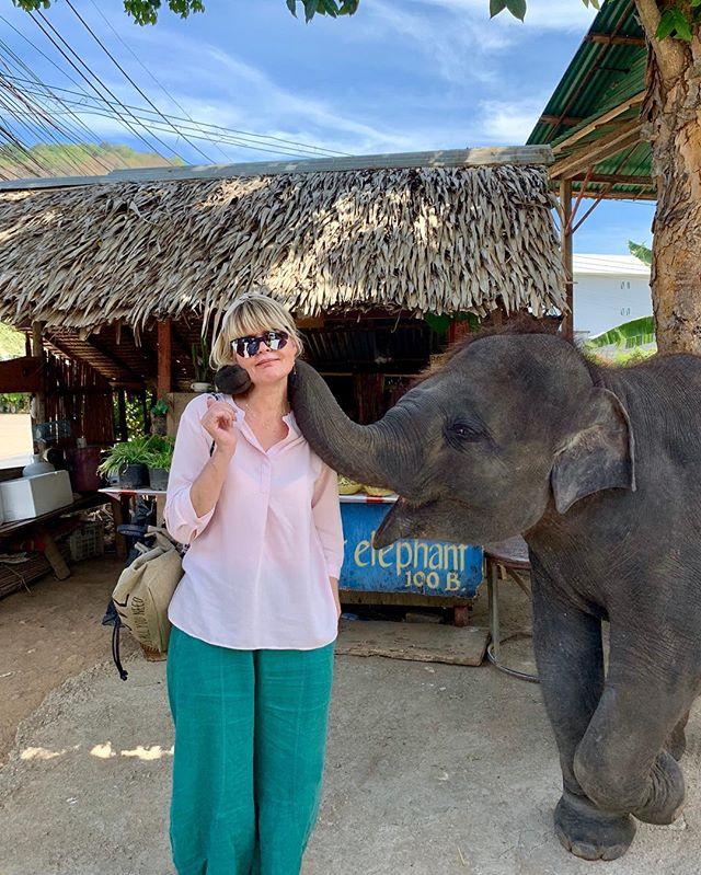 """В Таиланде пенсия есть только у слонов: Юлия Меньшова узнала об азиатском """"собесе"""""""