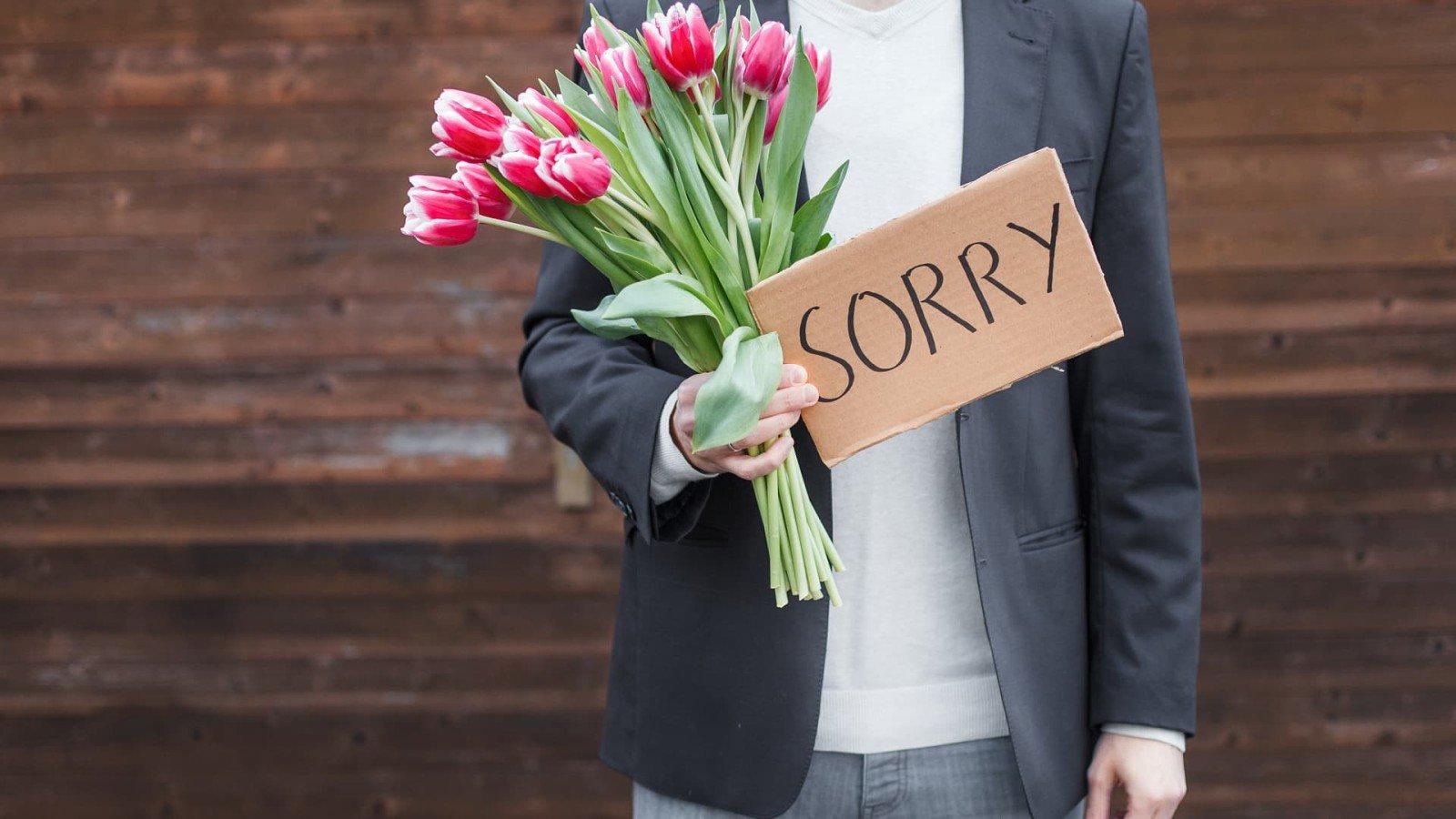 Движении анимации, картинки извинение перед женой