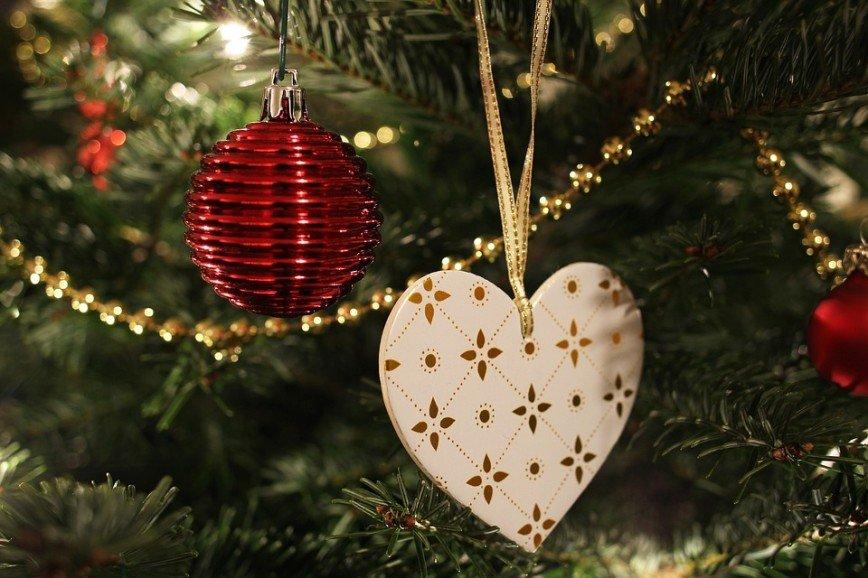10 советов, как выбрать и сохранить новогоднюю ель на время праздников