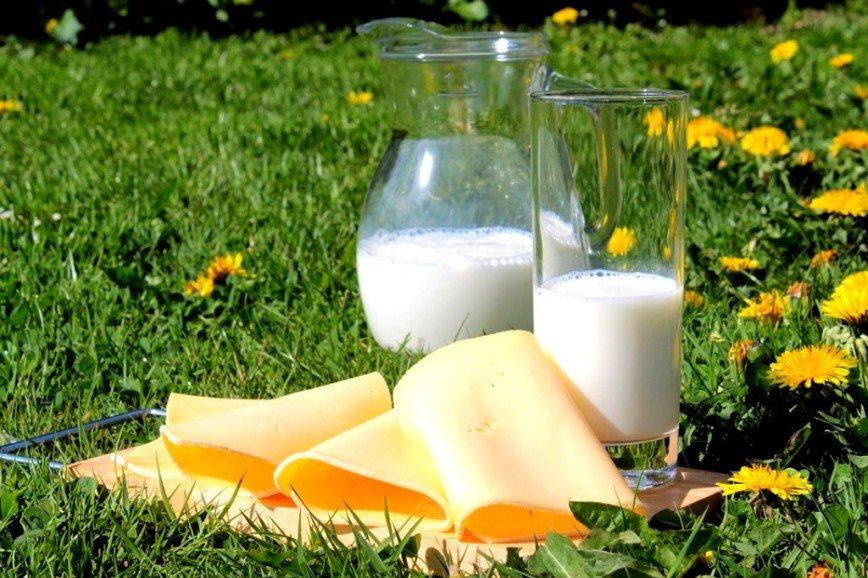 Ученые нашли связь между употреблением молока и долголетием