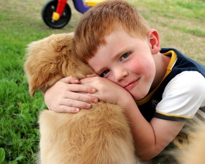 Мама, купи собаку: плюсы и минусы наличия домашних питомцев