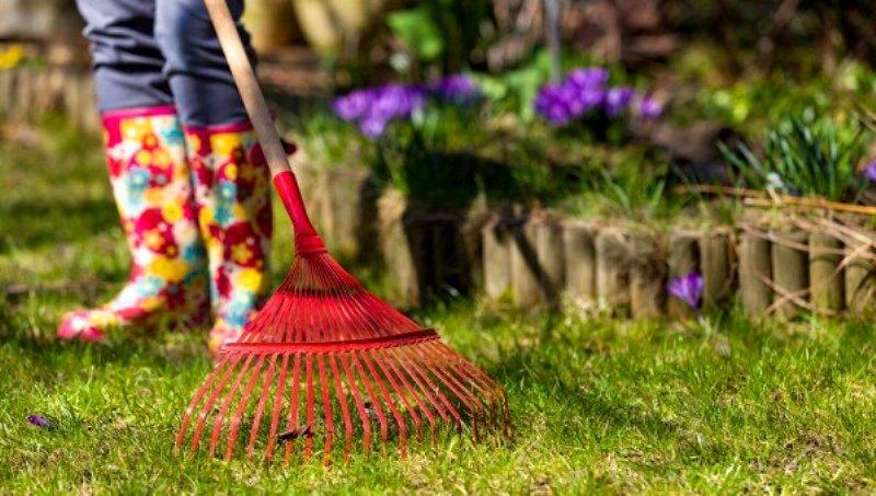 Копать не перекопать: как приготовиться к дачному сезону