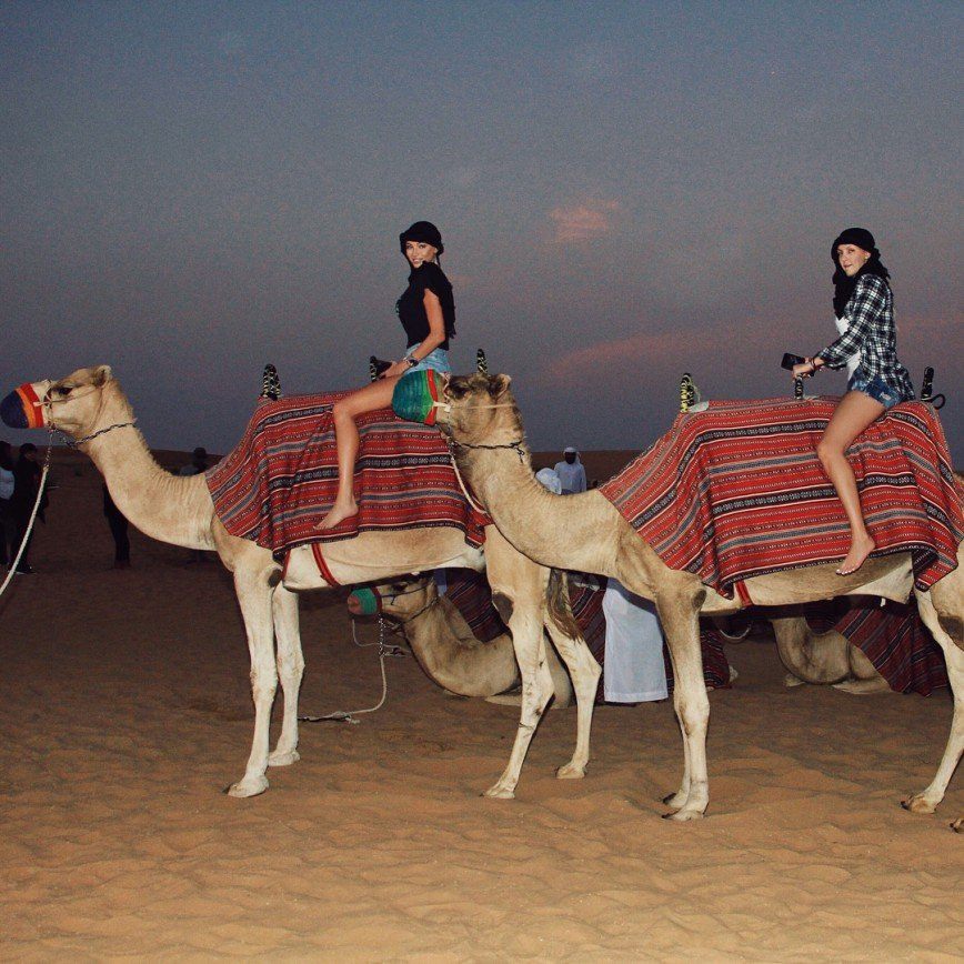 «Ноги, как у верблюда»: Алена Шишкова удивила длинными ногами