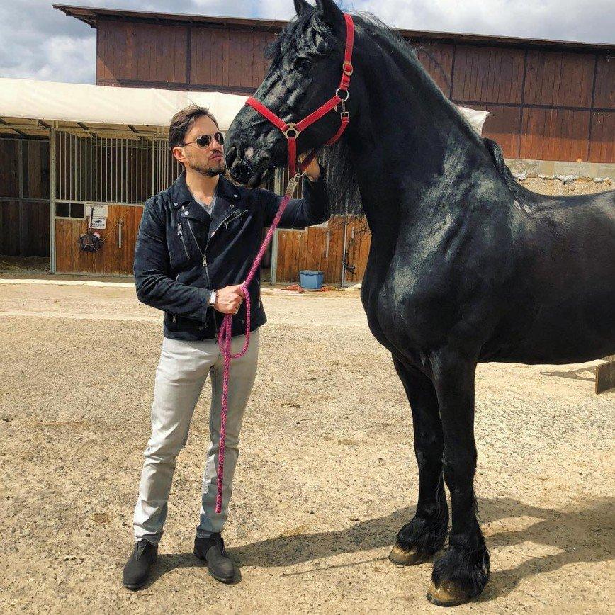 «Вот это мистер Дарси»: Александр Ревва оседлал коня