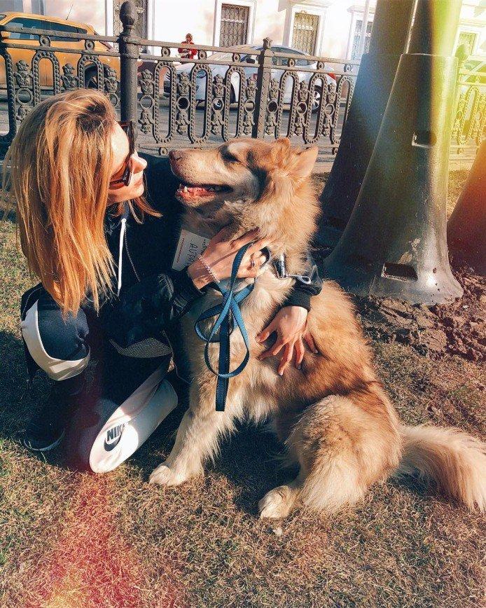 """Залипла на час"": Юлианна Караулова влюбилась в пса из приюта"