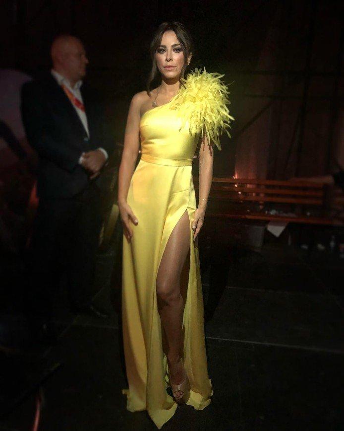 «Как вам идет цвет мимозы!»: Александр Васильев восхищен платьем Ани Лорак