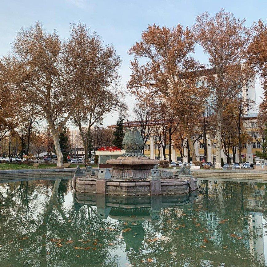 Я так сюда хотела: Светлана Иванова в восторге от Ташкента