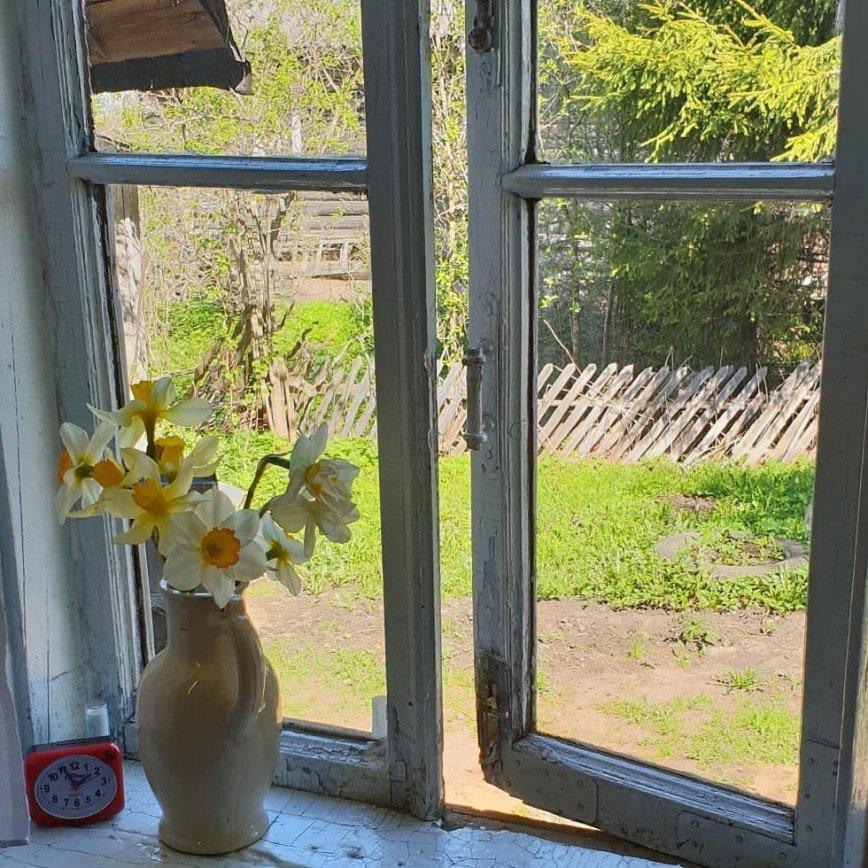 «Неожиданное счастье»: Вера Брежнева побывала в доме, где прошло ее детство