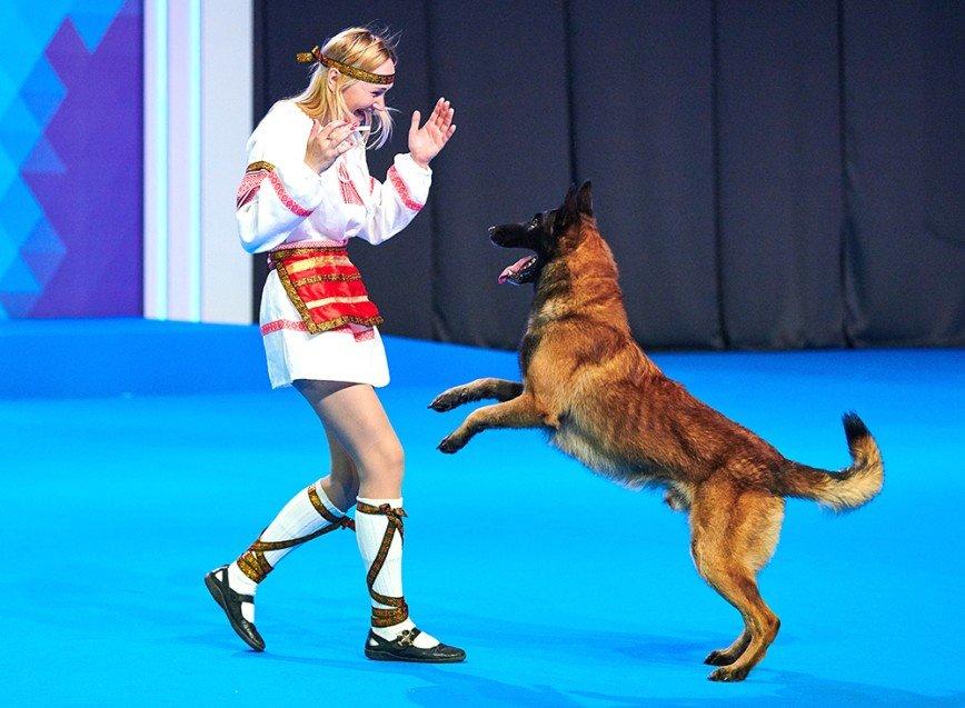 Редкие породы собак представят 3 и 4 ноября на интернациональной выставке РКФ «Россия-2018»