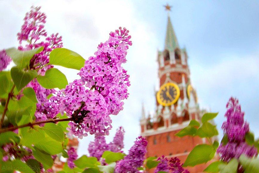 С 17 по 19 мая в столице впервые пройдет фестиваль «Николин день»